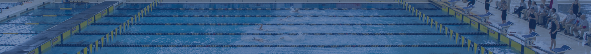 Image of a pool with swimmers.